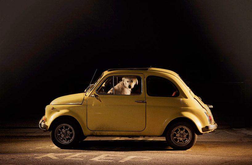 The Silence of Dogs in Cars - Martin Usborne_06
