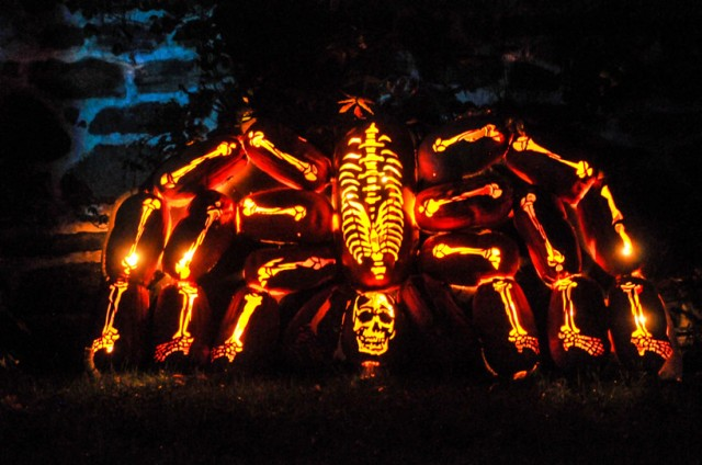 The Great Jack O'Lantern Blaze_07