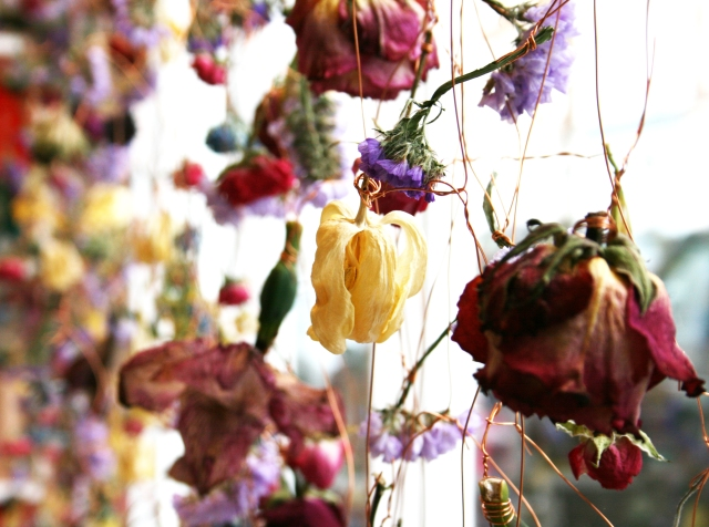 Rebecca Louise Law Suspended Floral Installations_09