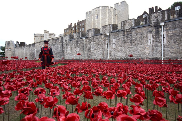 Paul Cummins-Ceramic Poppies Tower of London_03