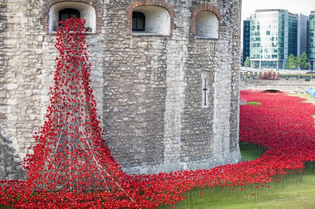 Paul Cummins-Ceramic Poppies Tower of London_04