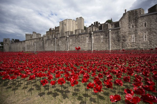 Paul Cummins-Ceramic Poppies Tower of London_06