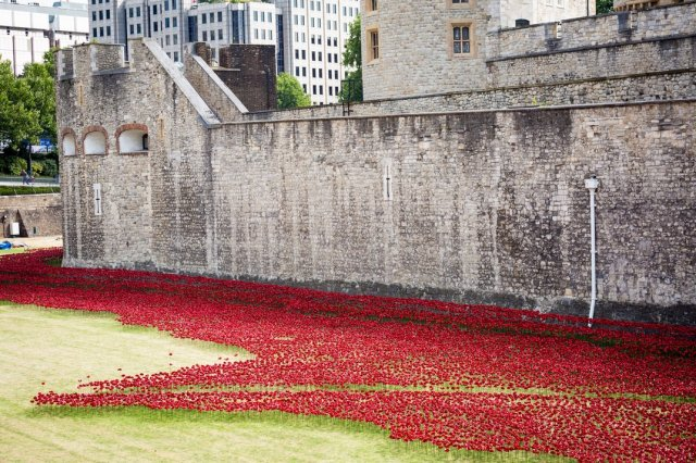 Paul Cummins-Ceramic Poppies Tower of London_07