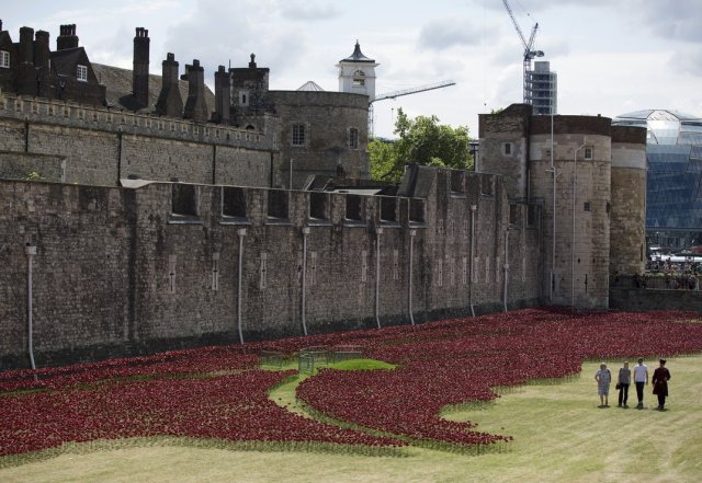 Paul Cummins-Ceramic Poppies Tower of London_10