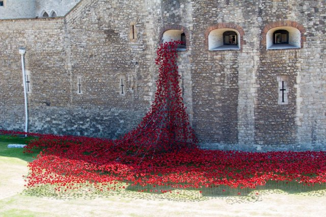 Paul Cummins-Ceramic Poppies Tower of London_11