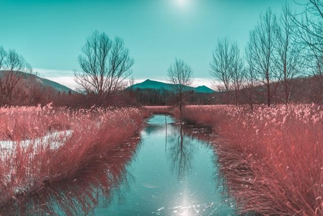 Paolo-Pettigiani-Infared Landscapes_05